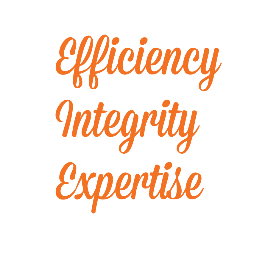 Efficiency Integrity Expertise in payroll DLB Consultancy