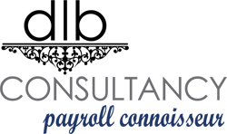 Payroll Consultant